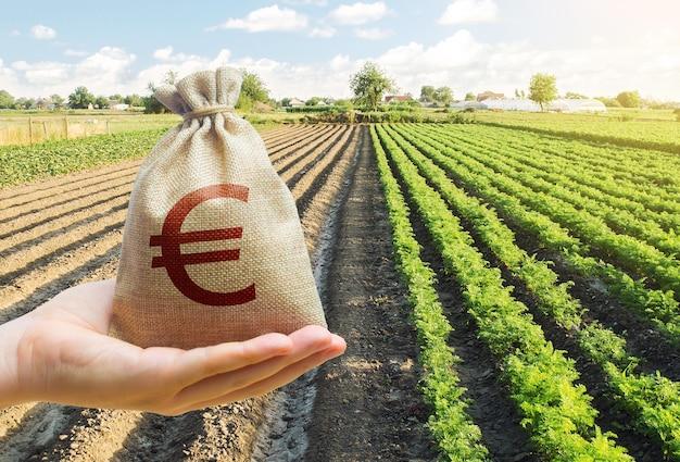 Mão estende um saco euro y em um fundo de uma plantação de cenoura.