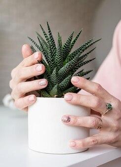 Mão feminina com manicure recém-feita segurando uma planta de vaso suculenta