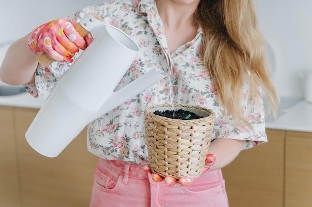 Mão feminina humana em luvas rosa segurando o regador branco e regar brotos jovens em vasos de vime.