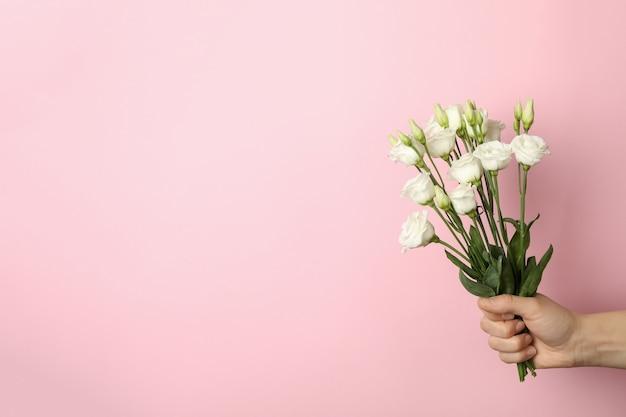 Mão feminina segurando buquê de rosas em fundo rosa