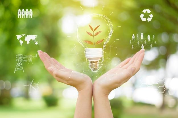 Mão humana está segurando a lâmpada verde, salvar o conceito de terra.