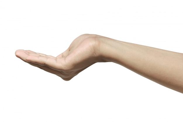 Mão humana, mostrar, algo
