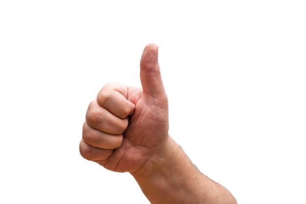 Mão isolada com o polegar para cima no fundo branco.
