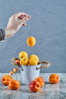 Mão jogando damascos no pequeno balde com nectarina na superfície de mármore