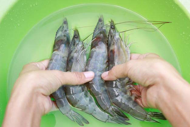 Mão limpeza camarão cru na tigela