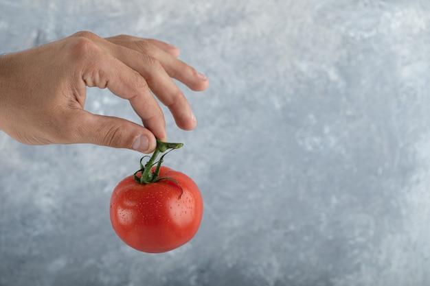 Mão masculina segurando tomate vermelho fresco no ar.
