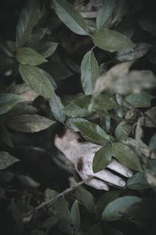 Mão morta, projetando-se de grama