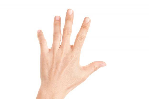 Mão mostrada cinco dedos