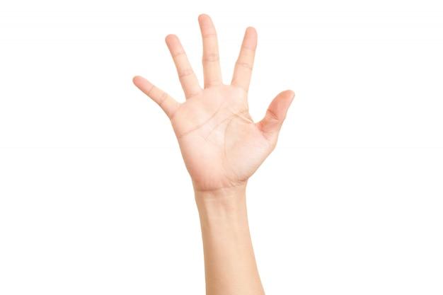 Mão mostrado símbolo de cinco dedos.