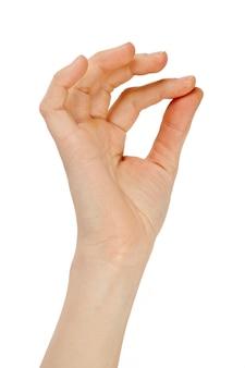 Mão no branco isolado