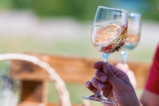 Mão segura dois copos com vinho branco ao lado de uvas na natureza