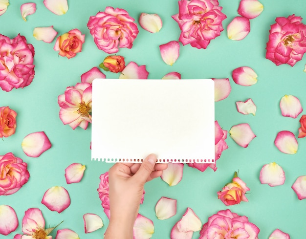Mão segurando a folha branca em branco, rasgada do bloco de notas