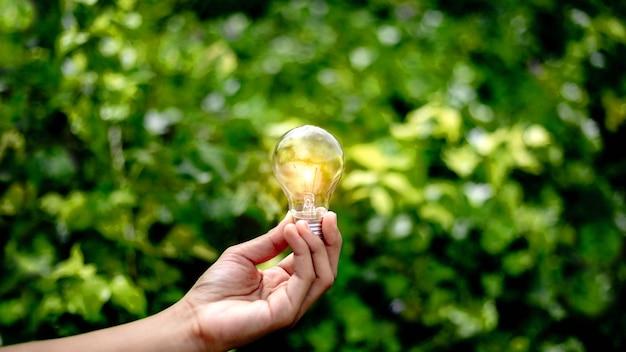 Mão segurando a lâmpada, energia natural e amo o conceito de mundo.