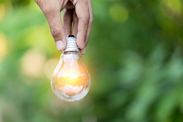 Mão segurando a lâmpada, fontes de energia para o conceito de energia renovável, natural.