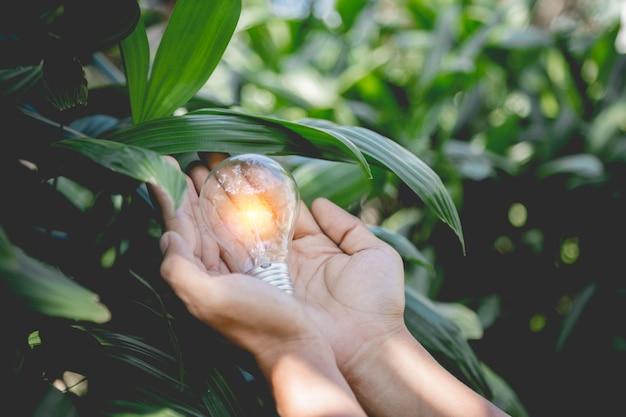 Mão segurando a lâmpada, fontes de energia renovável, energia natural e amo o conceito do mundo.