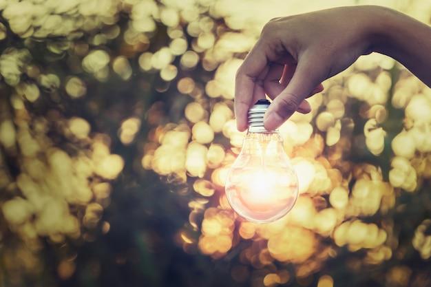 Mão segurando a lâmpada na floresta