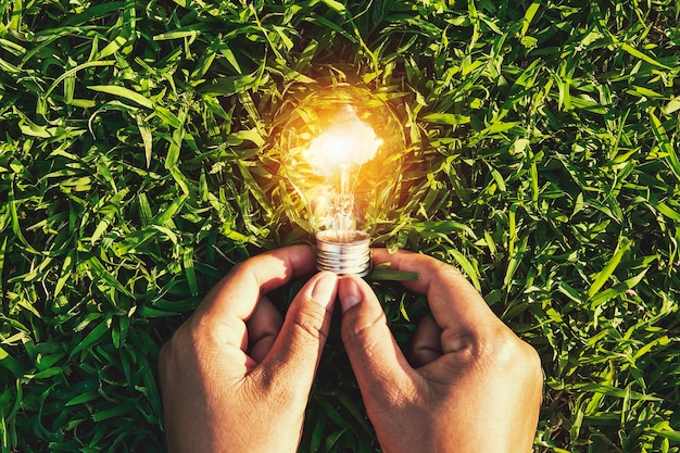 Mão segurando a lâmpada na grama. eco conceito poder energia na natureza