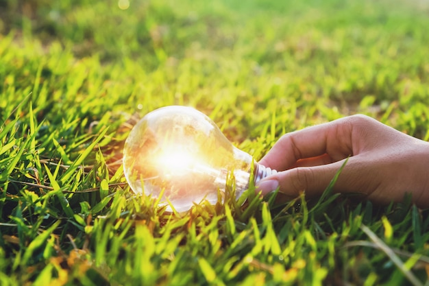Mão segurando a lâmpada na grama verde com pôr do sol