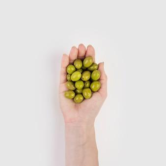 Mão segurando azeitonas orgânicas
