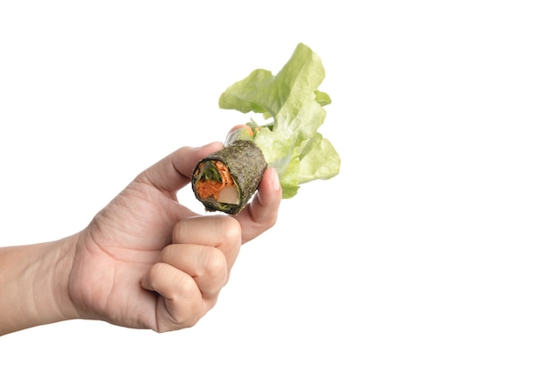 Mão, segurando, hydroponics, vegetal, salada, rolo, embrulhado, por, alga