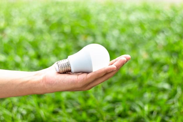 Mão segurando o bulbo do diodo emissor de luz com iluminação no fundo verde da natureza
