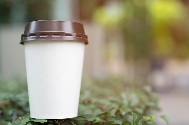 Mão segurando o copo de papel de tomar café tomando café na luz solar natural da manhã. espaço para o seu logotipo. deixe espaço para escrever o texto.