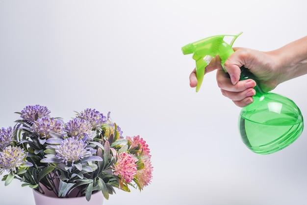 Mão segurando o frasco de spray de plástico verde e flores em um vaso em um fundo branco. a mão de uma mulher espalha flores em um vaso. homem com pulverizador de água na mão. copie o espaço