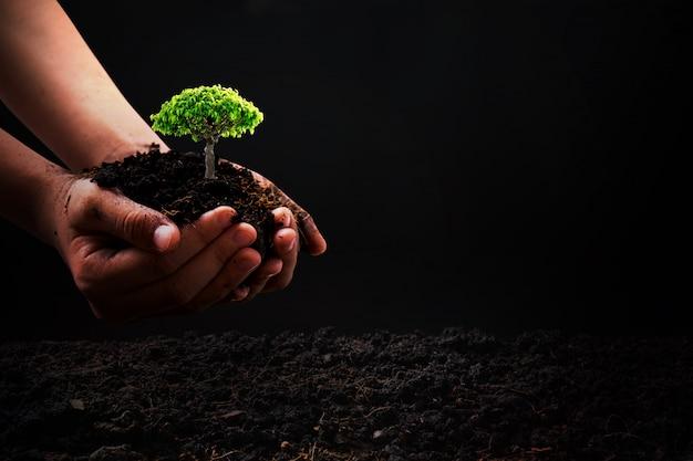 Mão segurando o solo com mudas