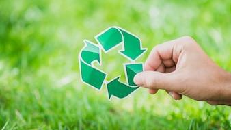 Mão, segurando, recicle símbolo, contra, grama verde