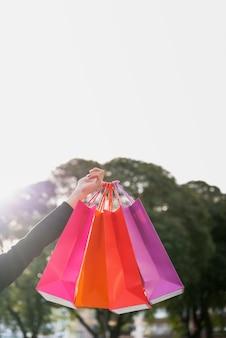 Mão segurando sacolas de compras com árvore atrás