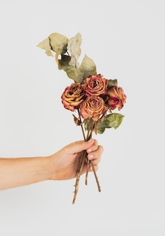 Mão segurando um buquê de rosas secas