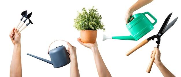 Mão segurando um conjunto de ferramentas de jardinagem para seu projeto. mãos de mulher com vários equipamentos com isolado.