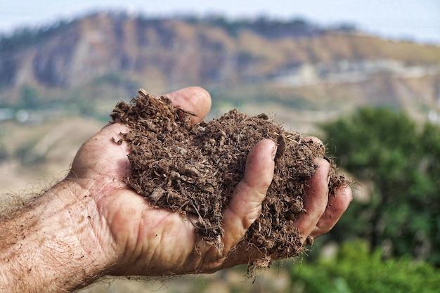Mão, segurando, um, pedaço terra