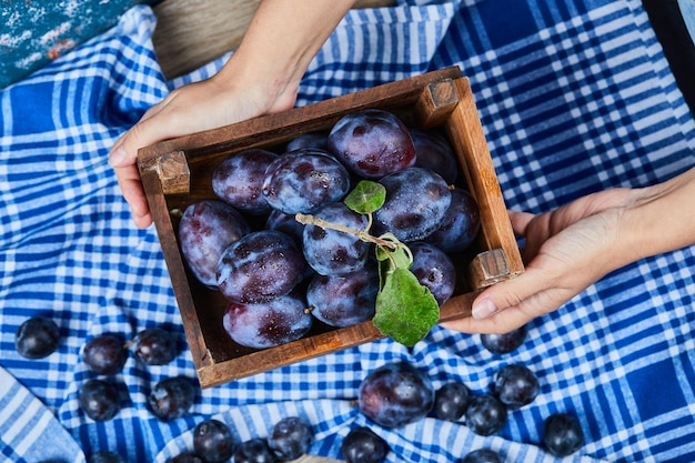 Mão segurando uma cesta de madeira de ameixas de jardim em uma mesa de madeira. foto de alta qualidade