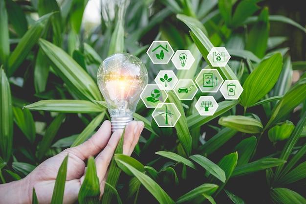 Mão segurando uma lâmpada com ícones de fontes de energia renováveis