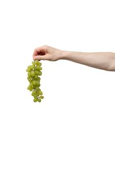 Mão segurando uvas no fundo branco