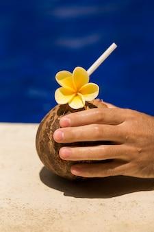 Mão segure a bebida de coco com flor amarela