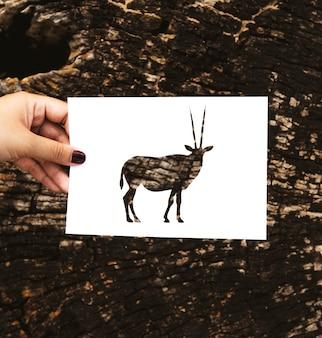 Mão segure gemsbok oryx papel escultura