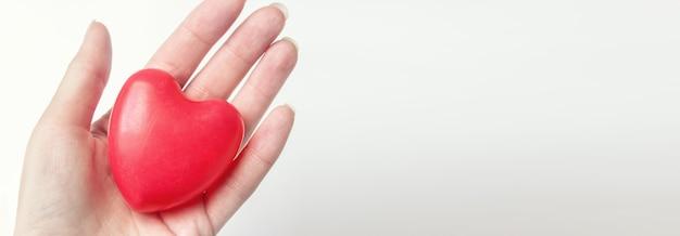Mão segure o coração vermelho. conceito de rsc, dia mundial do coração, dia mundial da saúde, dia nacional do doador de órgãos.