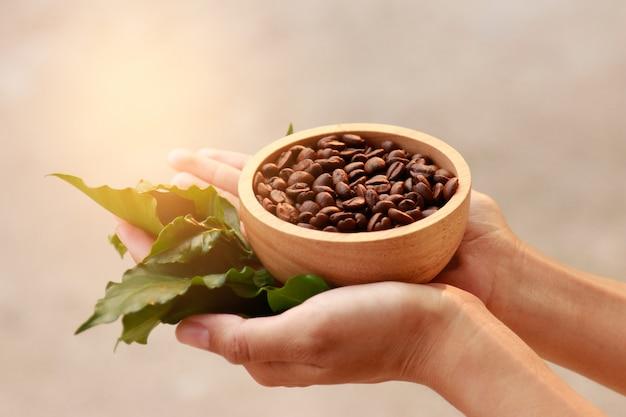 Mão segure o grão de café para beber saudável