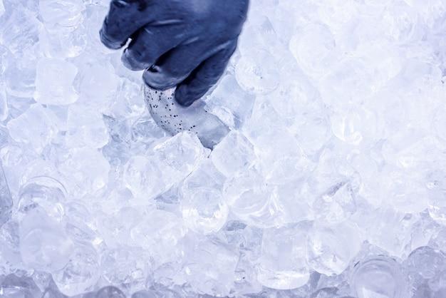 Mão tomando gelo com colher de metal para coquetéis