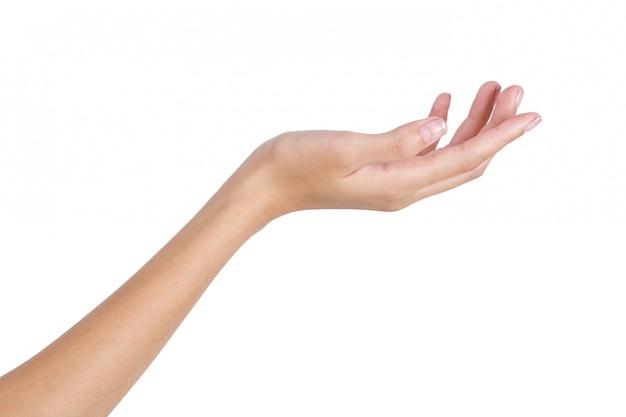 Mão vazia da mulher que guarda com lado traseiro da mão isolado no branco