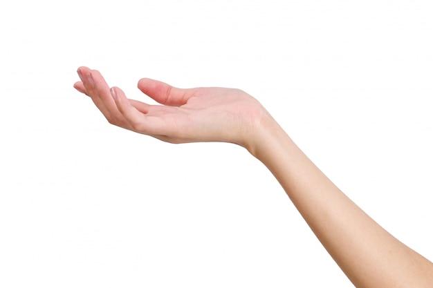 Mão vazia da mulher que guarda com o lado da mão dianteira isolado no branco
