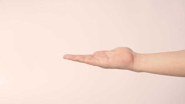 Mão vazia sobre fundo branco.