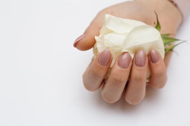Mãos bonitas com manicure e rosa branca