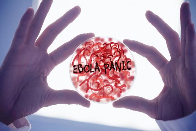 Mãos cientistas, segurando, petri, prato, de, germes