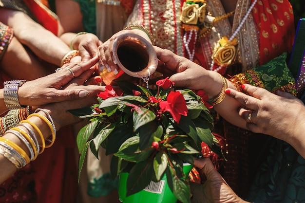 Mãos das mulheres indianas despejam a parte sagrada em uma flor vermelha