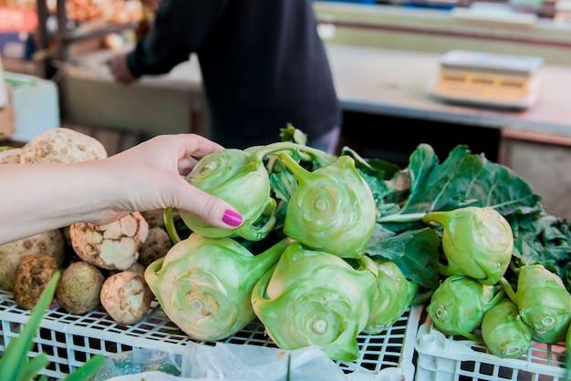 Mãos das mulheres que prendem a couve-rábano. colheita de outono e conceito de alimentos orgânicos saudáveis. mulher escolhendo vegetais frescos para medir no supermercado