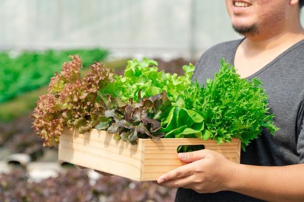 Mãos de agricultor asiático carregando legumes orgânicos frescos em caixa de madeira da fazenda de hidroponia