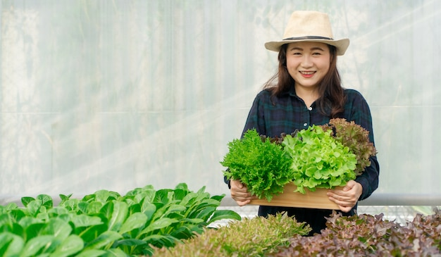 Mãos de agricultor mulheres asiáticas carregando legumes orgânicos frescos em caixa de madeira da fazenda de hidroponia